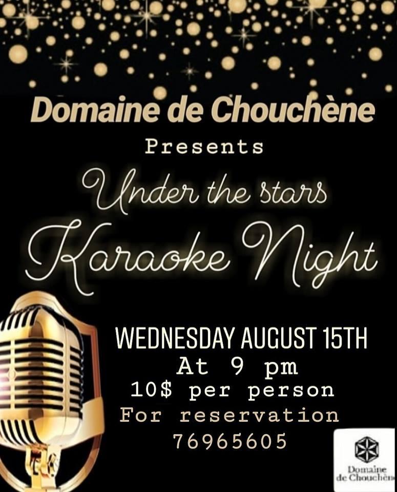 Karaoke Night Under the Stars